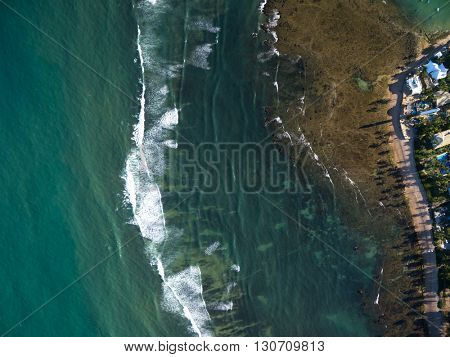 Top View of Coral Reefs in a Costal Beach
