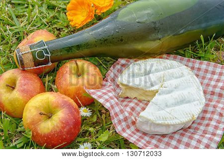 several apples with cider and camembert in the grass