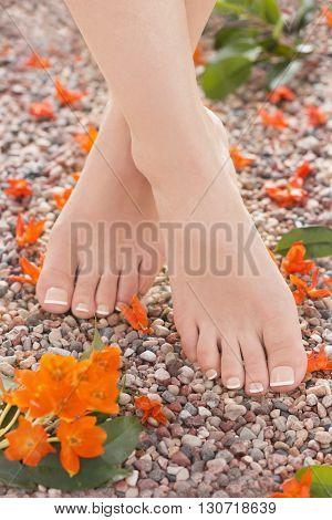 Well groomed female feet shot in the morning light.