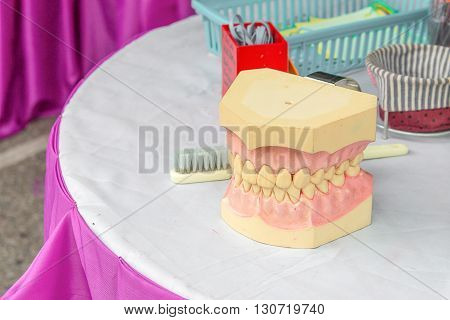Closeup upper denture plastic on a model on a table