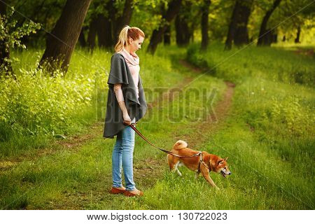 Walk girl and dogs Shiba Inu in Spring Park. Walking with a pet. Pedigree dog. Dog walking.