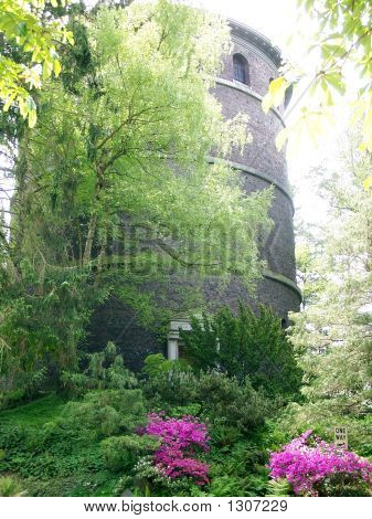 Spring Foliage/Old Tower