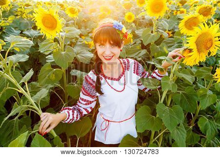 Pretty young woman in national ukrainian blouse embrodery looking to camera on a sunflower field at sunset backlight.