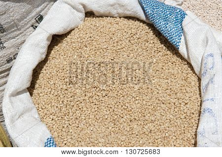 A grain packed in a bag at a farmers market.