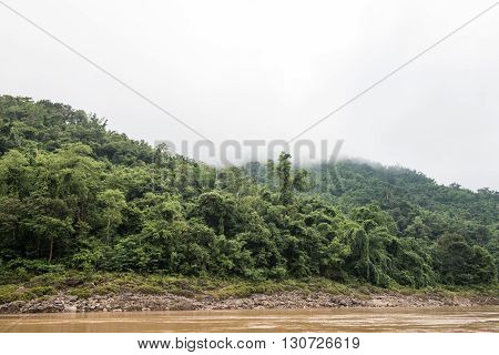 View of the Phou Si mountain surrounding the Mekong river in Laos. Mount Phou Si comprises of dense forests and lush greeneries, which looks like someone spread a green blanket.