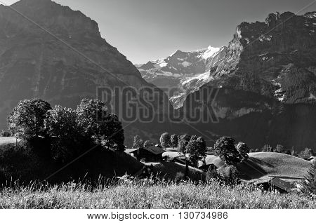 Swiss Alps - snow capped mountains and deep valleys stunning view breath-taking panorama, Grindelwald