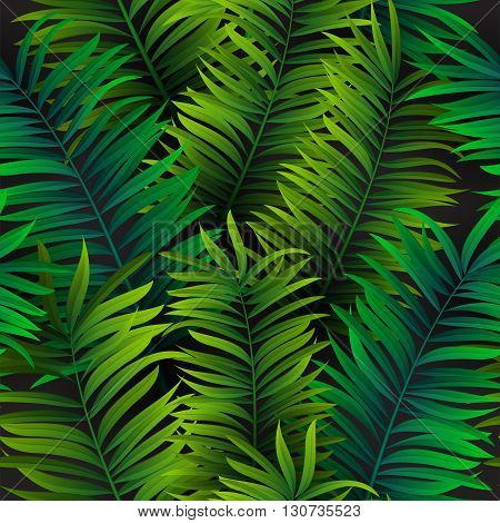 Tropical Palm Leaves Seamless Pattern. Vector Illustration. Eps 10