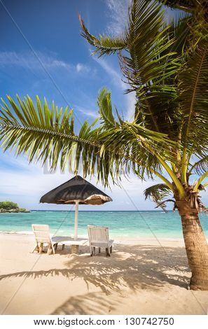 Chairs and parasol at tropical beach with coconut palms