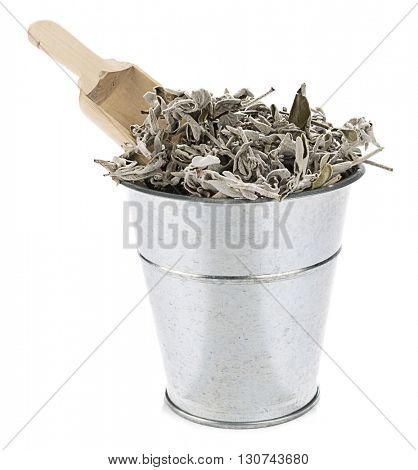 Metallic bucket full of sage tea plant isolated on white background.