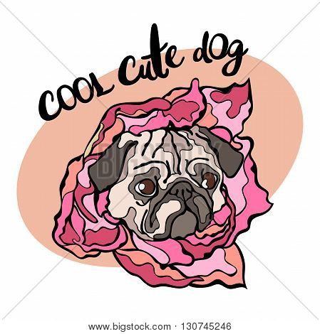 Cool cute dog. Dog. Pug. Flower. Lettering. Vector isolated object isolated on white background.