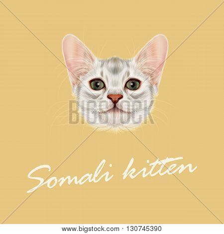 Vector Illustrated portrait of Somali kitten. Cute fluffy face of domestic cat on yellow background.