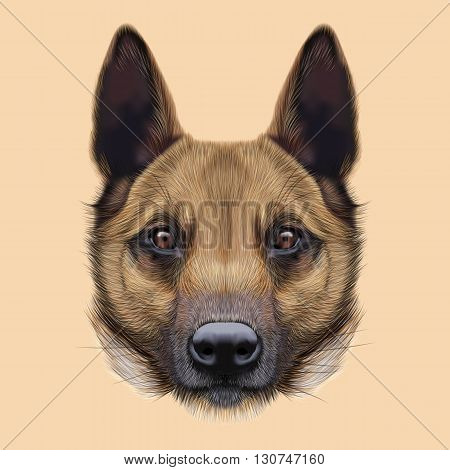 Illustrated Portrait of Malinois dog. Cute face of Shepherd dog on beige background.