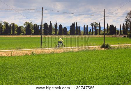 GRADO ITALY - APRIL 25: Cyclist riding the bike along the Nature reserve of the Isonzo river April 25 2016