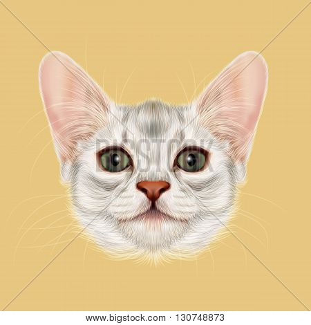 Illustrated portrait of Somali kitten. Cute fluffy face of domestic cat on yellow background.