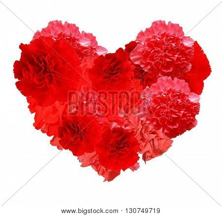 Red heart of carnations isolated on white background