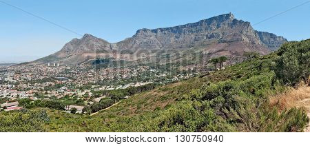 View Of Table Mountain Cape Town South Africa 14