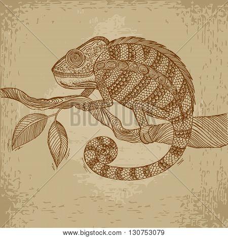Chameleon on leaf. Grunge hand drawn vector stock illustration