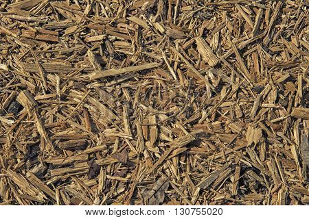 Pile Of Wood Sawdust For Background Or Texture