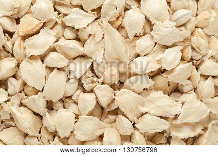 Organic White Moringa (Moringa oleifera) seeds. Macro close up background texture. Top view.