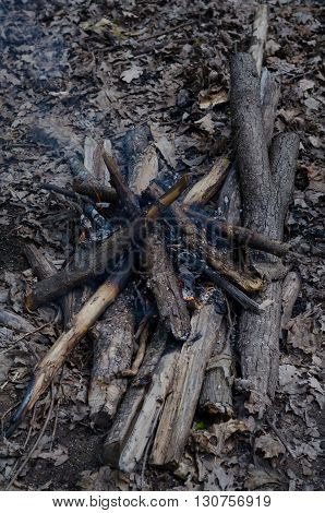Firewood for campfire on a picnic fireplace