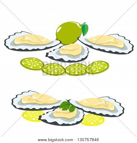 Set seafood. The shells of oysters, lemon and lime pieces. Leaves of parsley on a shell. Healthy eating.