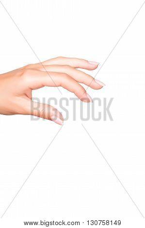 Female manicured hand isolated on white background