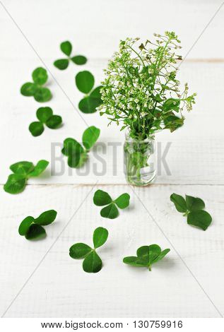 Little bouquet of meadow herbs, drugplant clover leaves scattered, white table. Soft focus.