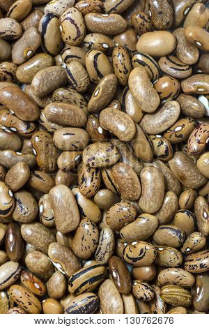 background bean seeds Nobody  Nutritious  Organic Pea