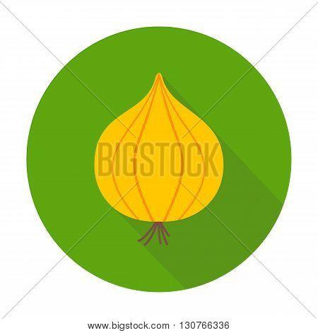 Onion Flat Circle Icon