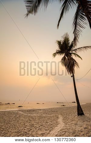 Tropical Landscape Of Hua Hin