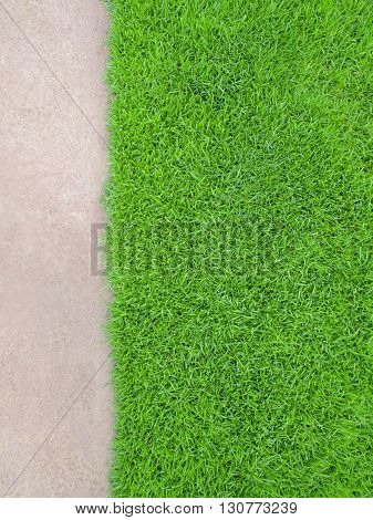 Top View Space of Meadow more than Cement Floor Building or Nature Concept Vertical