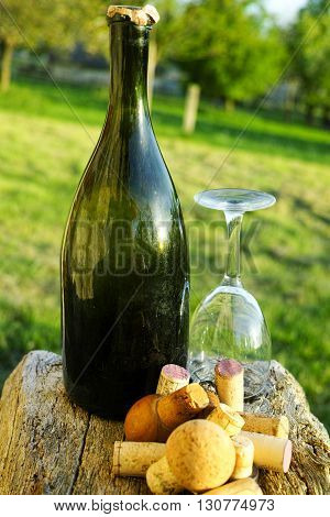 Old used vine corks cider bottle and glass in the garden Normandy France