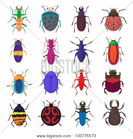 Insect bug icons set in cartoon style isolated on white background
