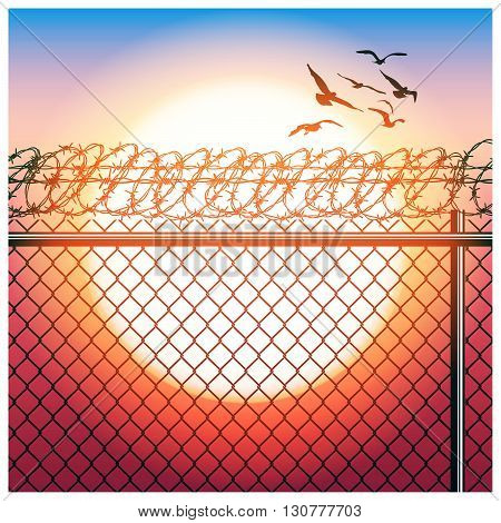 Stylized vector illustration of fence with barbed wire and flying birds in sunlight