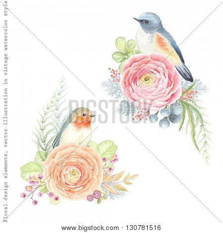 Collection vector decorative design of flowers ranunculus, Robin bird, Bluetail bird and leaves in vintage watercolor style.