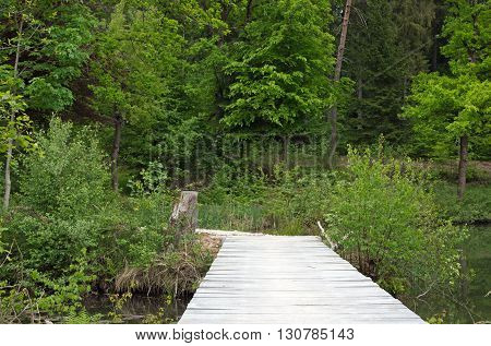 Bridge over a lake in the woods