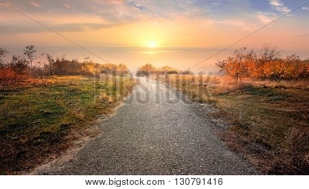 Asphalted road through countryside in red autumn