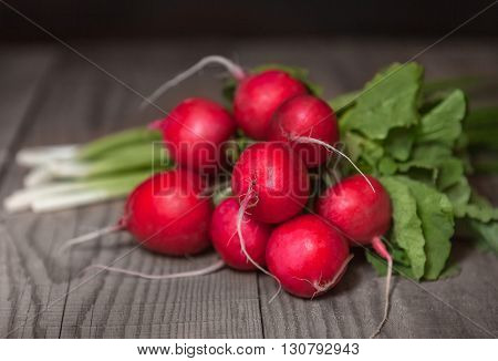 A bunch of ripe juicy red radishes with tops lying on a wooden table next to a green onion. Closeup with a small depth of field. Dof
