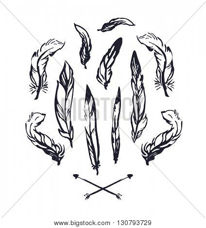 Hand drawn feathers Vector illustration.
