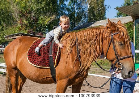 Baby of three rides on horseback on a sunny summer day