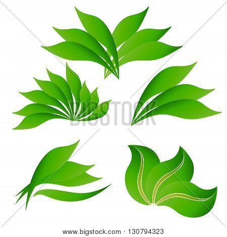 set of logos of various shapes of green leaves on a white background leaves logo ecology eco-friendly
