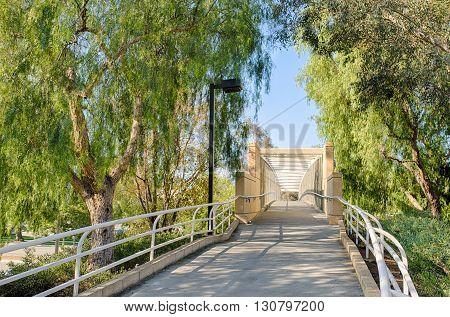 Trail To Walking Bridge