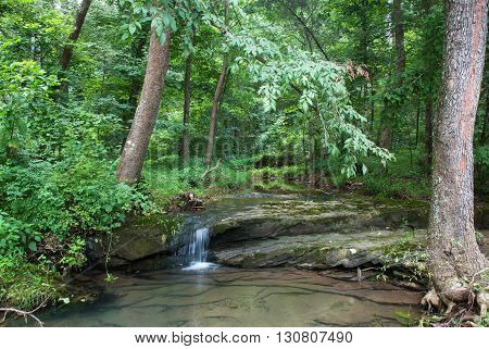 Bay creek makes its way through the forest Shawnee National Forest Illinois USA