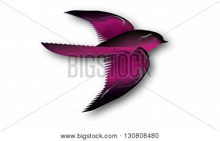 illustration of beautiful pink and black bird