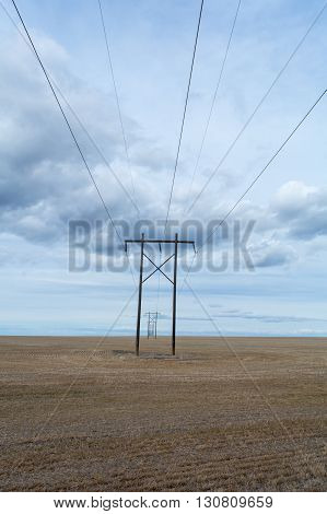 Razor straight set of power lines stretch into the distance.
