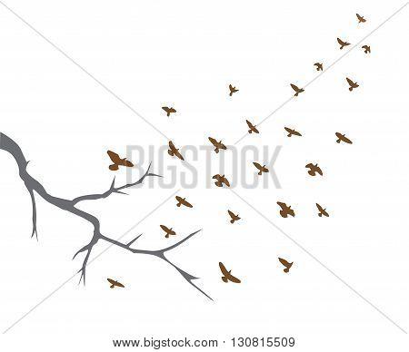 vector illustration of tree branch and bird flying