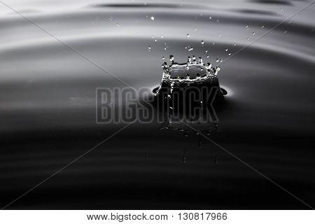 Heavy rain drop splash on asphalt closeup macro shot