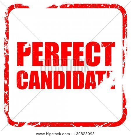 perfect candidate, red rubber stamp with grunge edges
