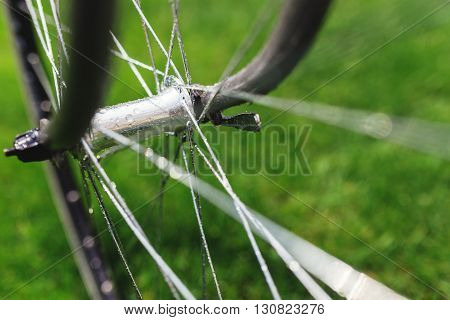 Classic road bicycle close-up photo in the summer green grass meadow field. Travel on bicycle.