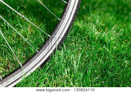 Classic road bicycle wheel close-up photo in the summer green grass meadow field. Travel background.